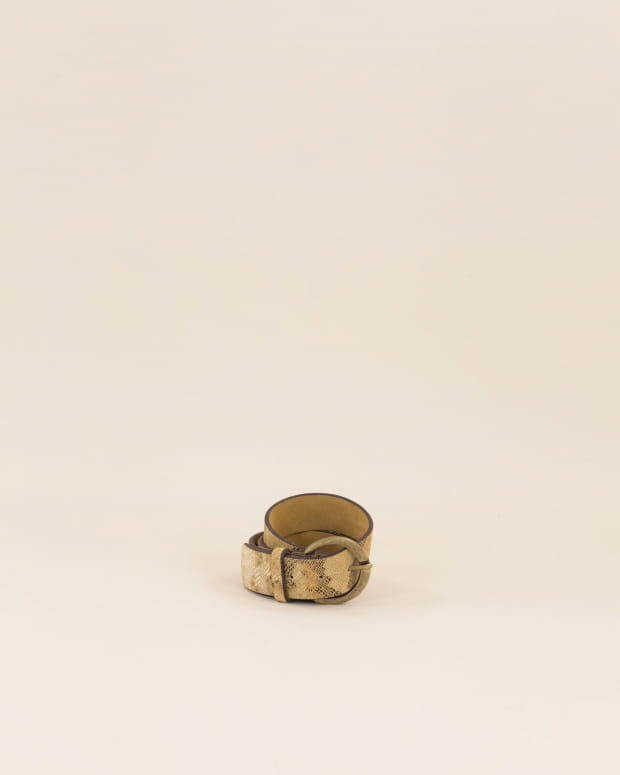 Judy pyth - Honey Gold