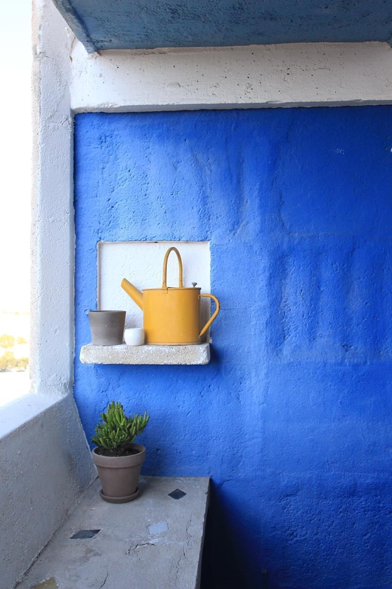 Terrasse Le Corbusier bleue arrosoir jaune